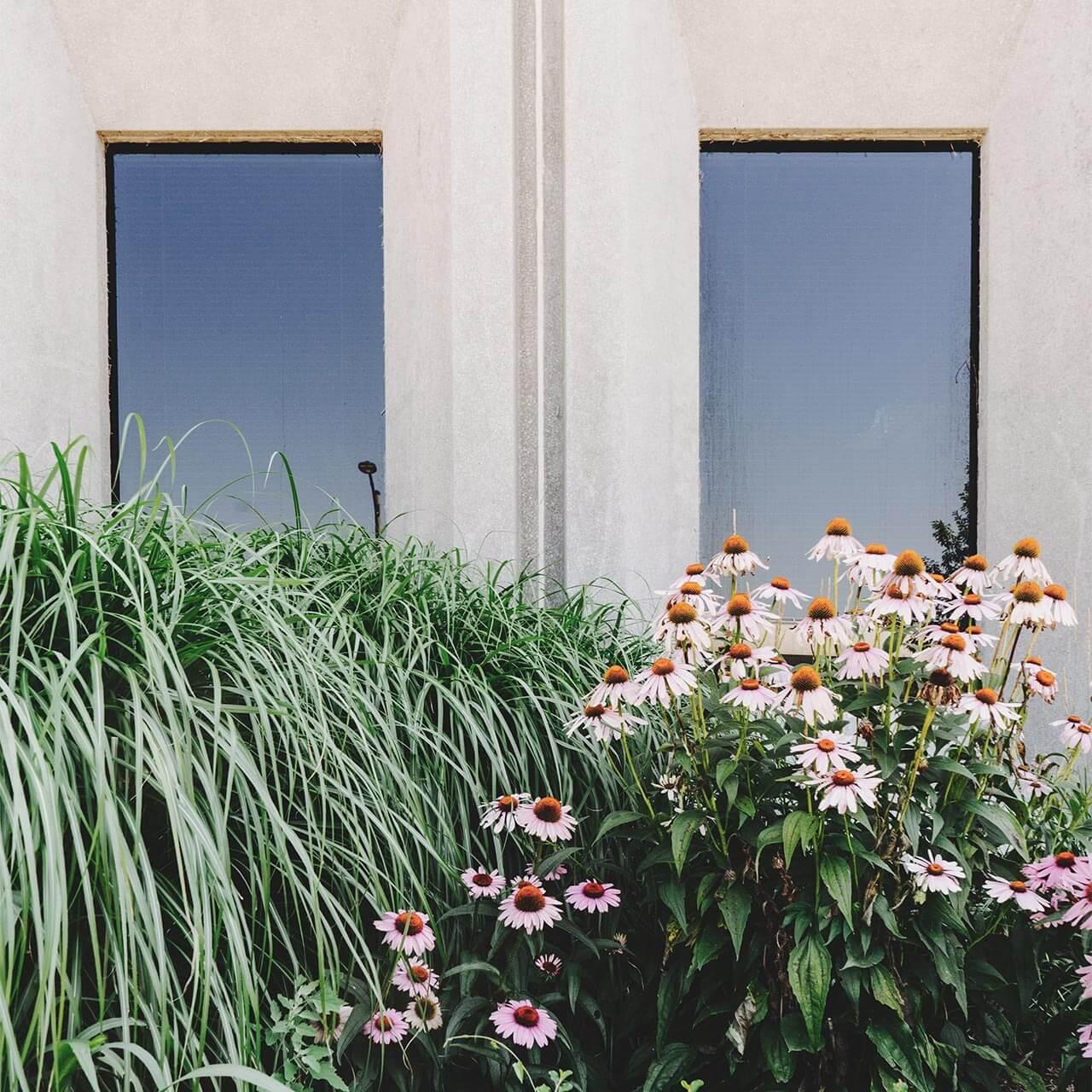 garden4_pic18